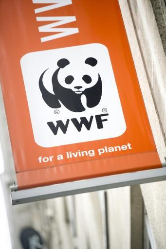 Le WWF dénonce la volonté de la France d'inclure le nucléaire dans la finance verte