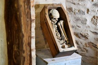 Le squelette Ernest, un mystère en partie levé par la science