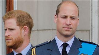 William et Harry BRISENT le silence et dénoncent la fausse histoire sur leur relation dans la presse