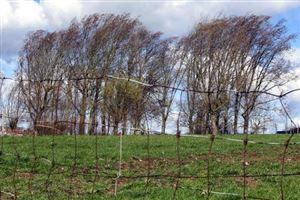 Météo - Le vent reste ancré en Belgique
