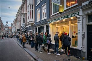 Coronavirus- aux Pays-Bas, après le papier toilette et les pâtes, les stocks de cannabis