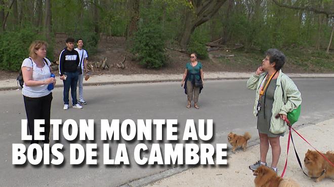 Les règles de confinement liées au coronavirus créent des tensions entre promeneurs- Vous ne pouvez pas madame! (vidéo)