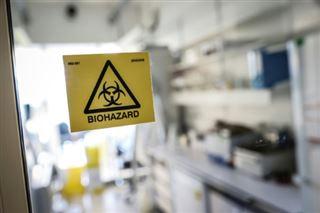 Coronavirus- interruption de l'essai clinique avec du sang de vers marins