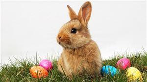 Météo: un week-end de Pâques magnifiiiiiiique, mais après?
