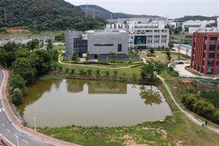 Coronavirus - La directrice du laboratoire de Wuhan nie toute responsabilité dans la pandémie