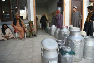Afghanistan- entre combats et corruption, la laiterie Milko creuse son sillon