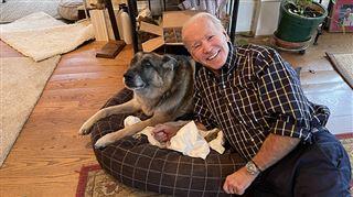 Major, premier chien issu d'un refuge à la Maison Blanche, a eu droit à sa cérémonie d'investiture avant Joe Biden 8