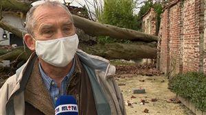 """Un hêtre de 20 mètres de haut s'écroule sur une maison à La Hulpe: """"Ça aurait pu tourner autrement"""""""