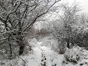 De la neige pour clôturer le week-end