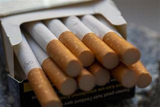 Les saisies de cigarettes de contrebande ont doublé en 2020, année record