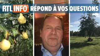 Pierre veut planter des arbres et entretenir sa chaudière dans sa seconde résidence en France- peut-il y aller?