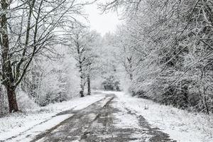 L'hiver a été plus chaud que la moyenne en Europe