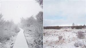 Il a neigé ce mercredi 5 mai dans les Hautes-Fagnes: un phénomène rare? (photos)