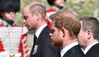 Les princes William et Harry se retrouvent pour inaugurer une statue de leur mère Lady Di