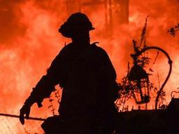 Les feux de forêt en Californie n'avaient jamais été aussi dévastateurs qu'en 2018
