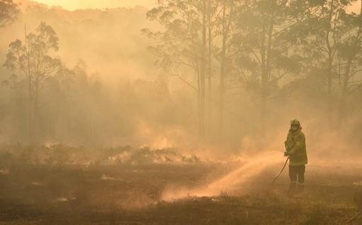 La police australienne arrête un homme suspecté de déclencher des feux de brousse