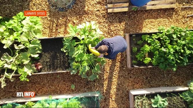 Employé dans l'aéronautique, Jérôme construit 19 potagers et partage ses légumes avec ses voisins: nous l'avons rencontré (vidéo)